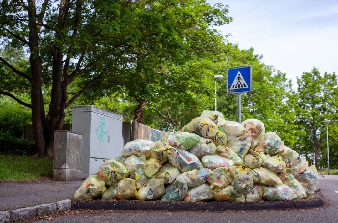 Unsplash/ Jasmin Sessler
