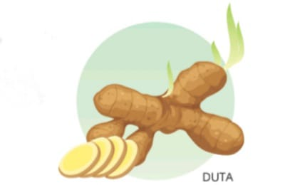 MI/Duta