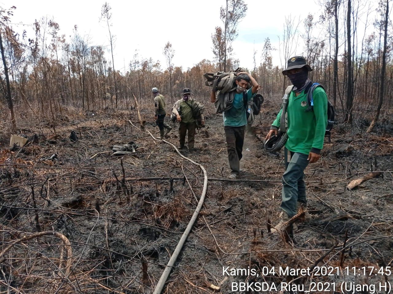 DOK BKSDA Riau