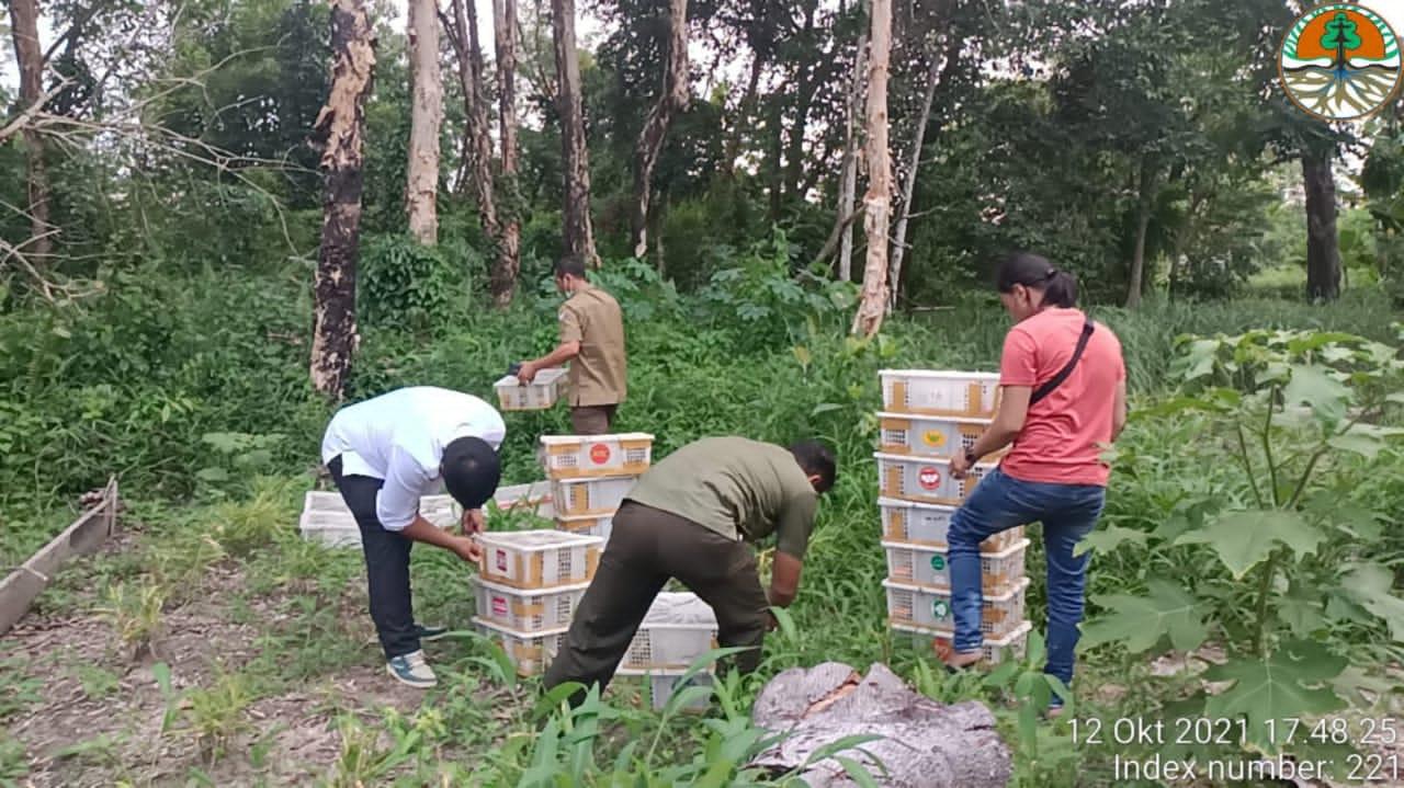 DOK/BBKSDA Riau