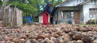 MI/Amiruddin Abdullah