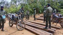 Humas Dinas Kehutanan Provinsi Kalimantan Selatan