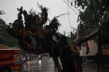 ANTARA FOTO/Didik Suhartono/foc.