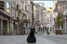 AFP/Ozan Kose.