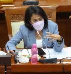 Perpres RAN-PE Bukti Komitmen Pemerintah Atasi Ekstremisme