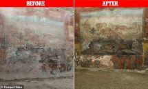 Pompeii Sites/DailyMail