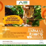 Ist/Taman Safari Indonesia