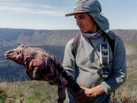 AFP/Freddy Jimenez/Parque Nacional Galapagos.