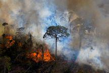 AFP/CARL DE SOUZA