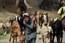 AFP/Javed TANVEER