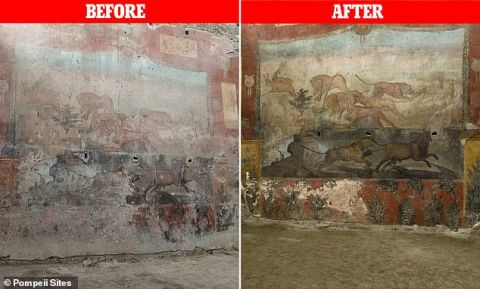 Pompeii Sites/DailyMail