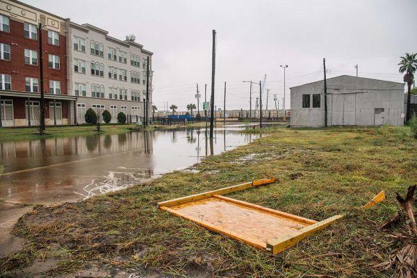 AFP/Getty Images/Jeff Vinnick/Bro